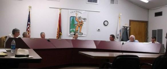 council-20130411 011