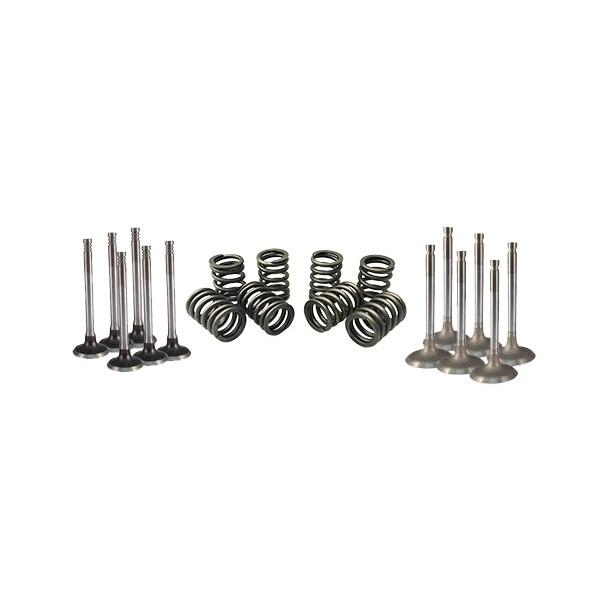 Northern Auto Parts Valves and Springs Kit Ford 302 1972