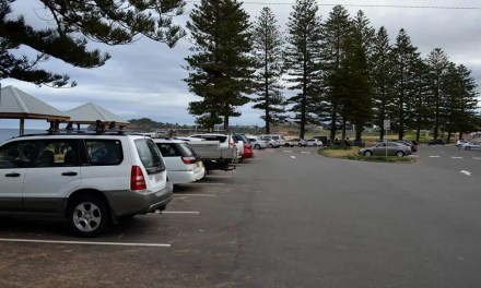 Beach parking restrictions lifted