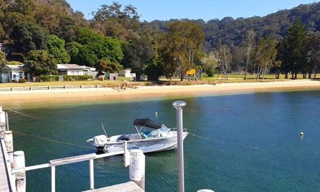 Currawong gets funding