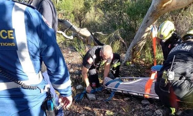 Rescue at Allambie Heights