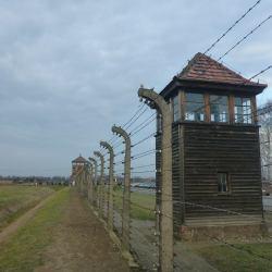 Nigdy Więcej Wojny: Touring Birkenau German Nazi Concentration Camp