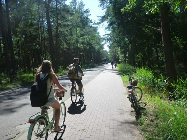 Quirky Encounters: Touring Sand Dunes and Cycling Through the Forest at Słowiński National Park