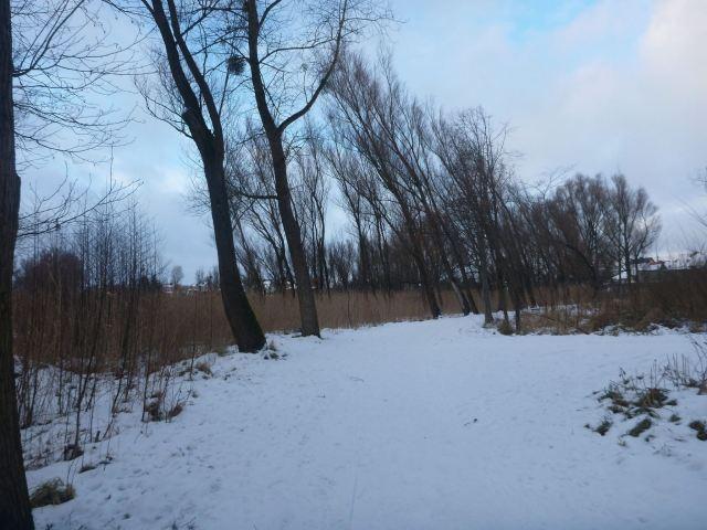 My walk to Jezioro Kraksy (Kraksy Lake)