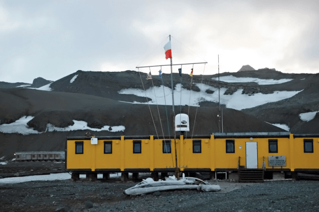 Dziwaczne Odkrycia: My Visit to Polish Antarctica, Henryk Arctowski Station, King George Island
