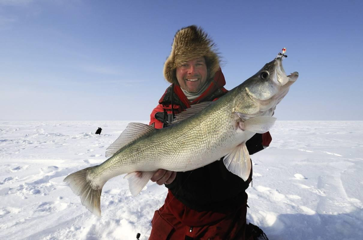 Official ice fishing in ontario report also weekly rh northernontarioavel