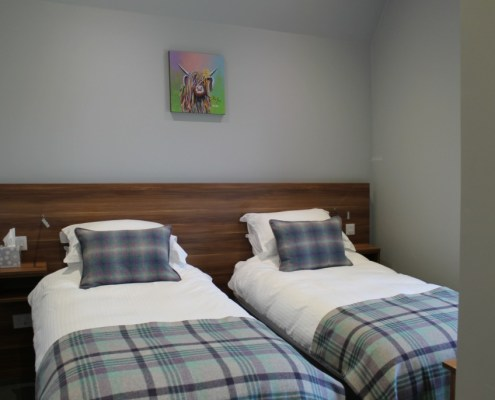 Standard King Twin Bed Accommodation