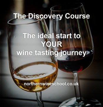 Discovery Course-the start of many wine tasting adventures