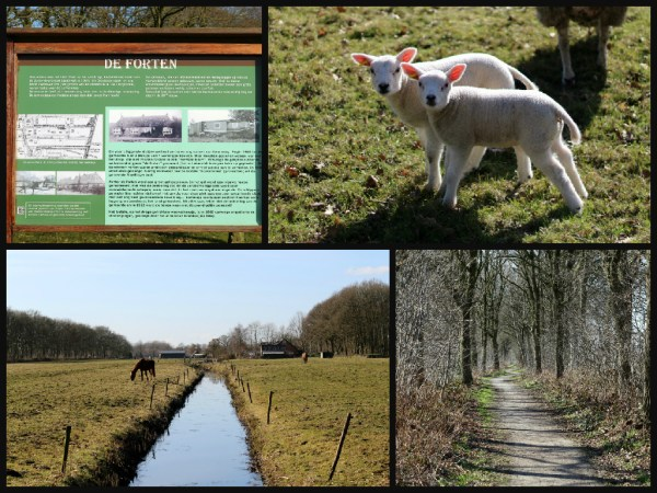 collage wandeling forten