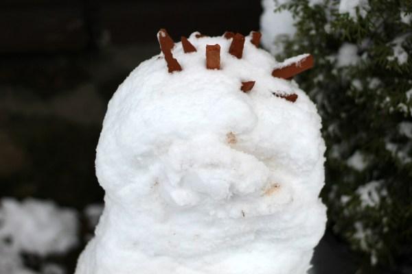 sneeuwpop 2