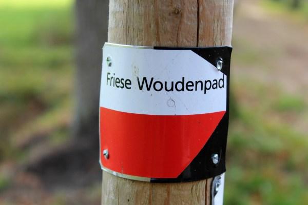 friese_woudenpad