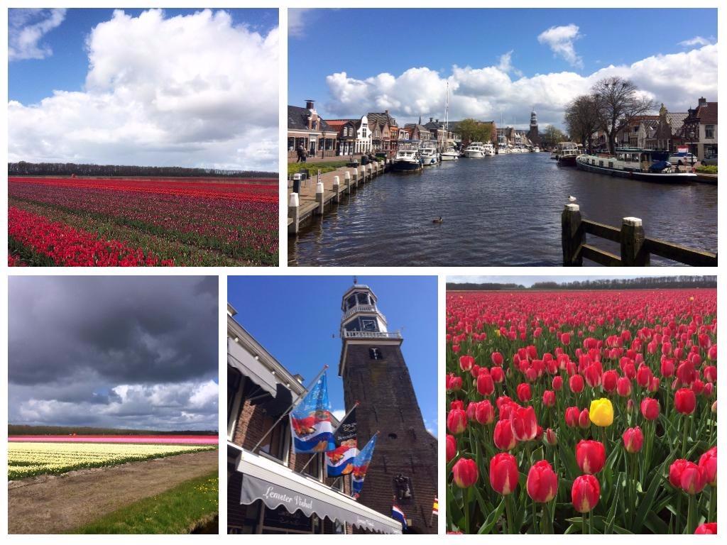 Een babbel- en fotoblog: Pasen, tulpen, worstelen met bloggen en meer…