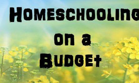 Budget Homeschooling