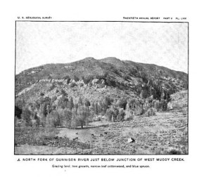 North Fork of the Gunnison River at Muddy Creek 1900