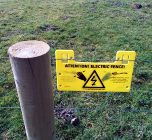 an electric fence too keep the beasts out