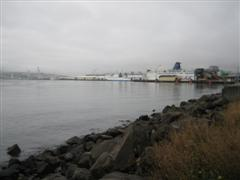 Wellington Ferry