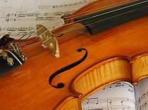 01386 violin