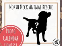 Enter your dog in the 2018 Cutest Dog Calendar Contest ...