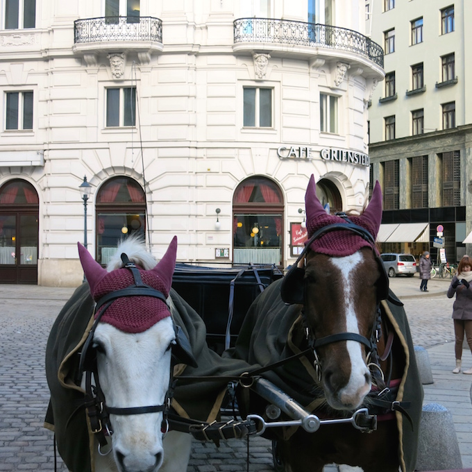 Vienna Horse Carriage 3