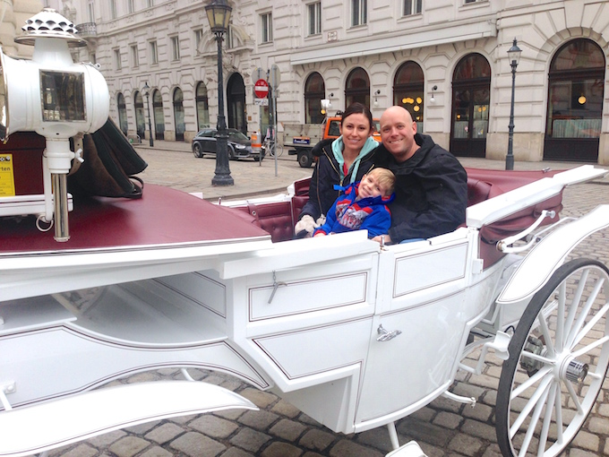 Vienna Horse Carriage 5