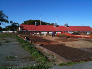 Photo of the garden plots being filled at North Perth Community Garden.