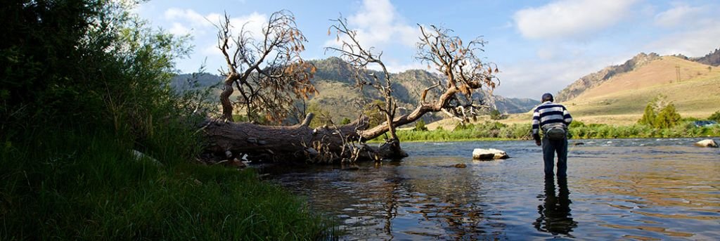 The Best Wyoming Fly Fishing Guides Outfitter Amp Fly Shop