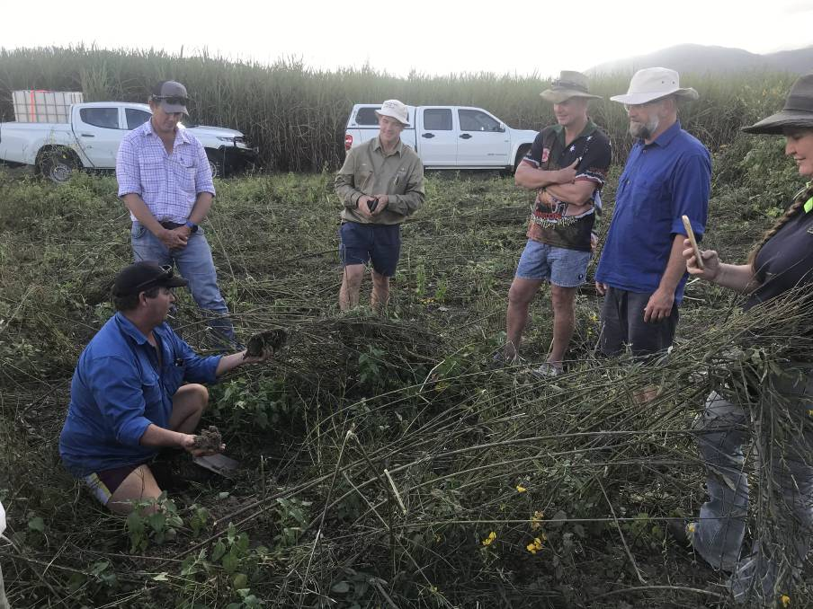 Growing confidence - Tully farmers gather to discuss soil health and regenerative farming practices.