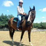 Full Private Riding Lesson Horseback 60 Minutes In Saddle At Arena Or Trailnorthroadfarm