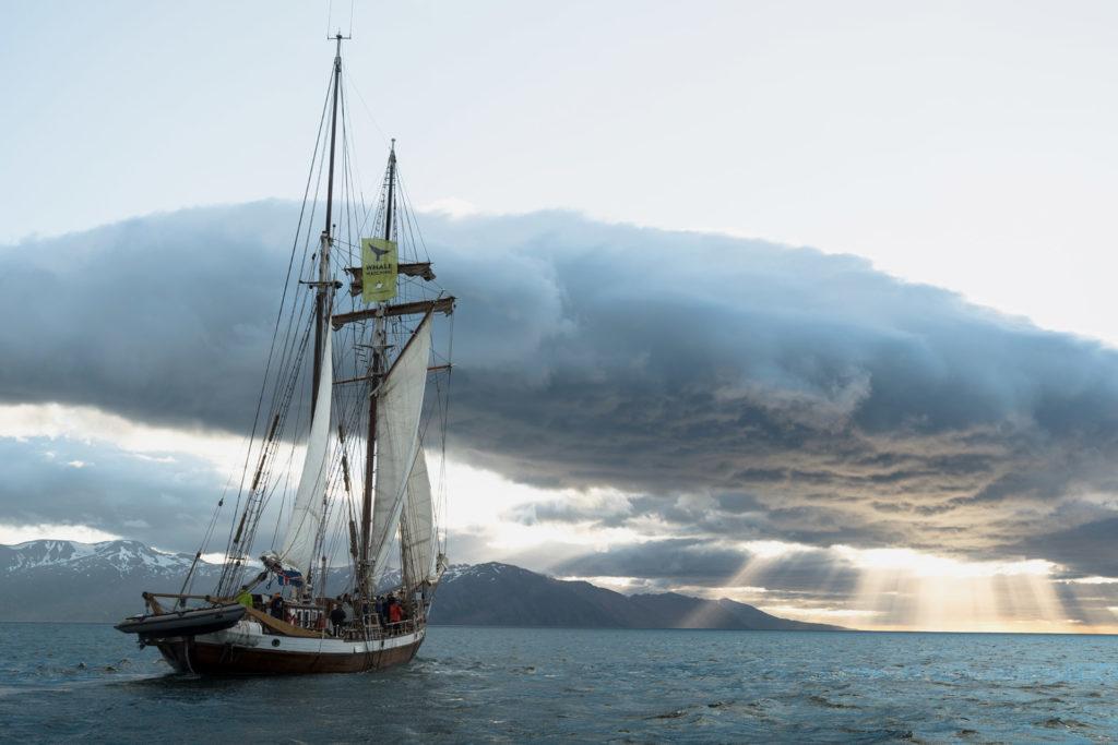 Reykjavik Northern Lights Tour on the electric sailboat Opal