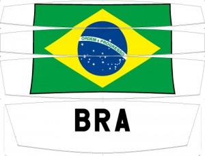 BRA_V2_3panels