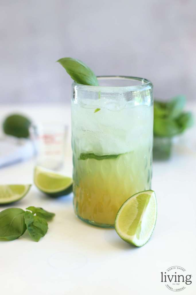 Pineapple Basil Cocktail