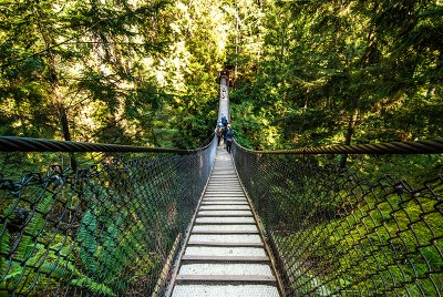 https://i0.wp.com/www.northshoredailypost.com/wp-content/uploads/2019/09/lynn-canyon-suspension-bridge.jpg?fit=400%2C268&ssl=1