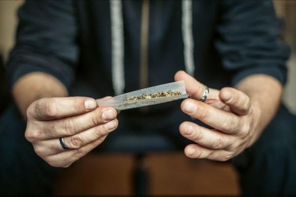 https://i0.wp.com/www.northshoredailypost.com/wp-content/uploads/2019/11/cannabis.jpg?fit=600%2C400&ssl=1