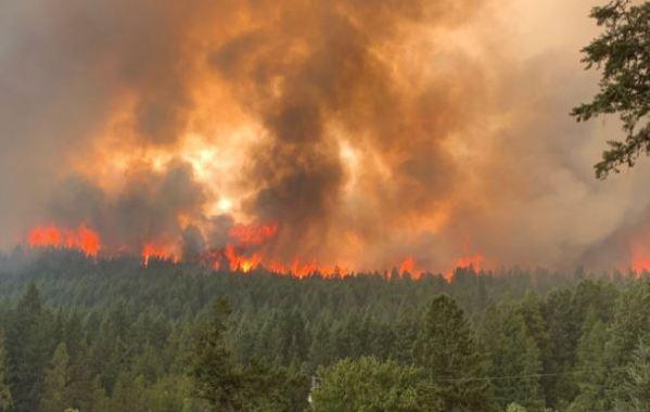 https://i0.wp.com/www.northshoredailypost.com/wp-content/uploads/2021/08/wildfire-2.jpg?fit=600%2C380&ssl=1