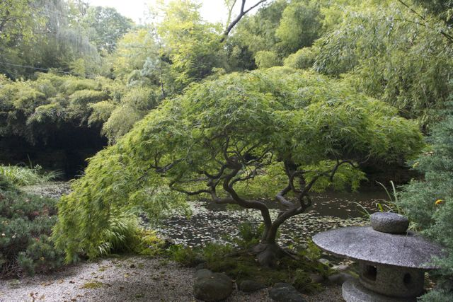 North Shore Land Alliance Purchased Humes Japanese Stroll Garden North Shore Land Alliance