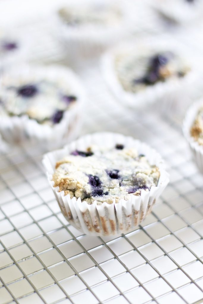 Blueberry and Walnut Breakfast Muffins (Vegan, Paleo, Gluten-Free)
