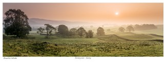Morning mists - Staveley