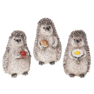 Hedgehog Families