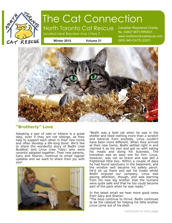 NTCR newsletter winter 2015 - Page1
