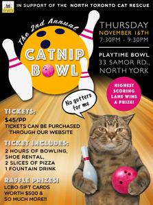 Catnip Bowl poster