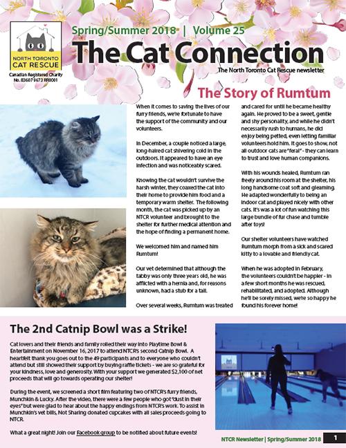 Newsletter Thumbnail