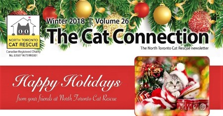 NTCR Winter 2018 Newsletter is OUT!!!