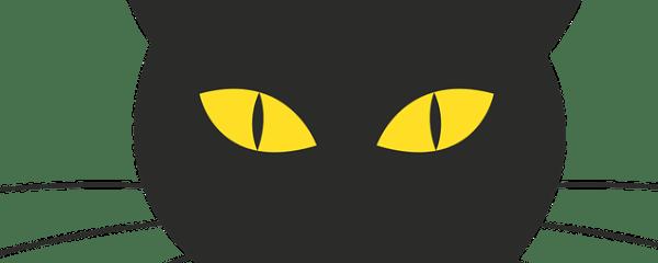 10 Brightest Cat Breeds