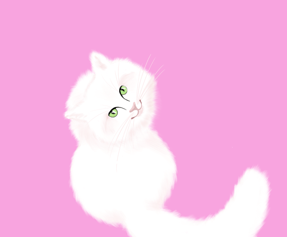 white-cat-4231621_1280.png