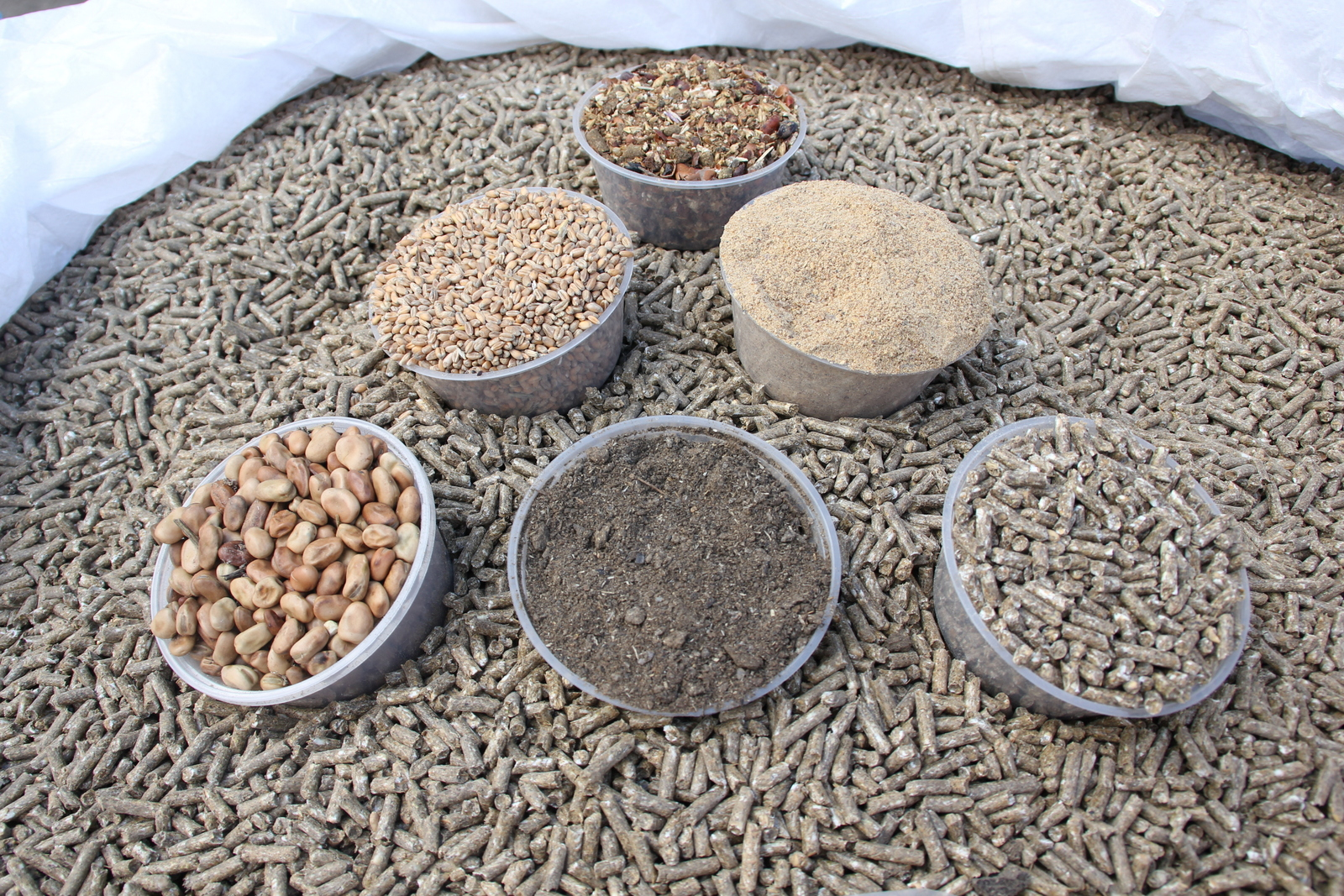 Northumbrian Quality Feeds Quality Feed Products To Match The