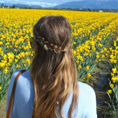 Guide to the Skagit Valley Tulip Festival