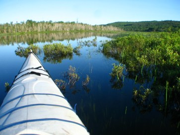 Kayaking on the Clyde River. Photo by Jayson Benoit.