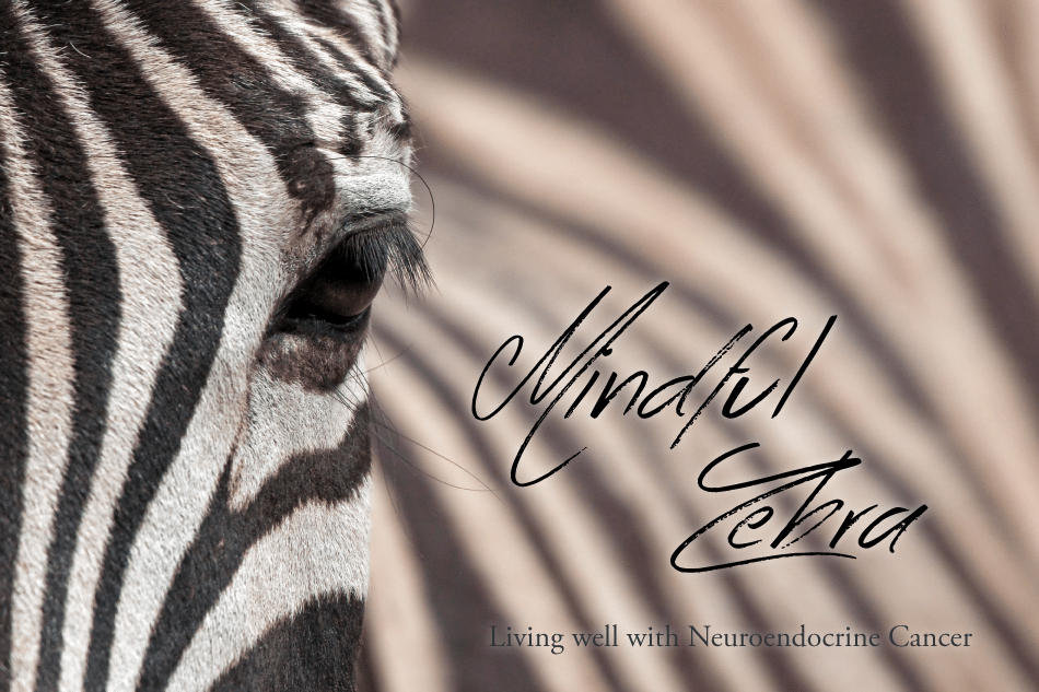 Mindful Zebra | Living well with Neuroendocrine Cancer