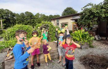 The Northwoods School Garden Club is off of a great start!