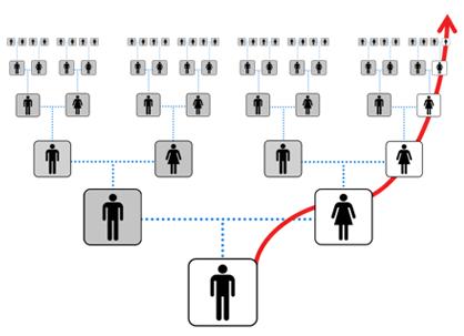 mtDNA og forskning